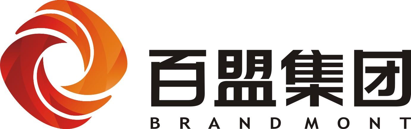 湖北百盟投资集团有限公司